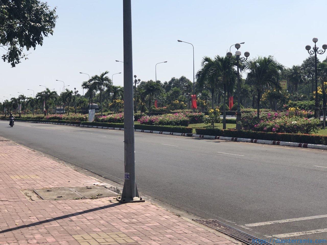 Trục đường chính căn hộ Terra Flora