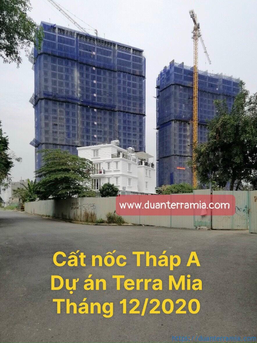 Cất nóc căn hộ Terra Mia